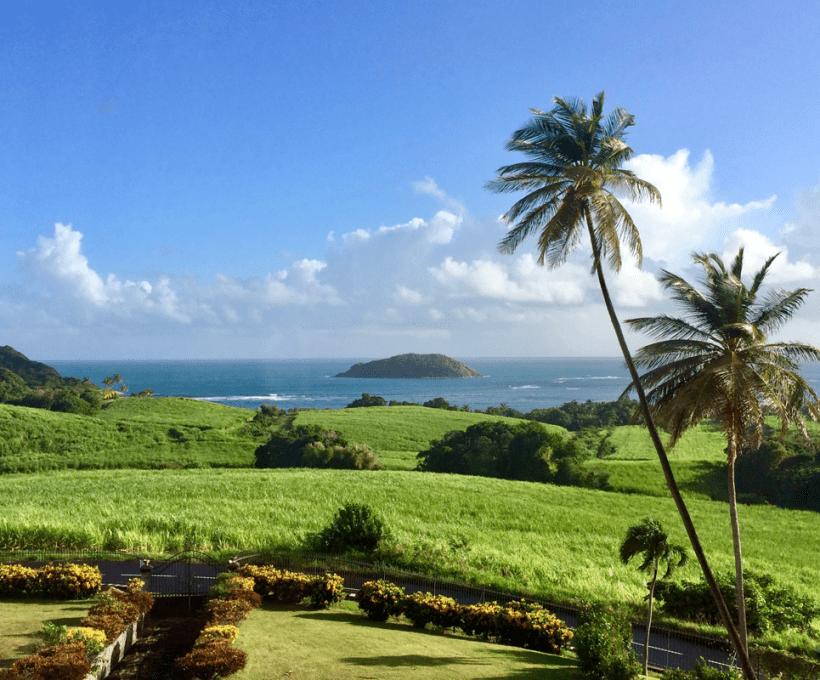 Les bons plans pour la Martinique !